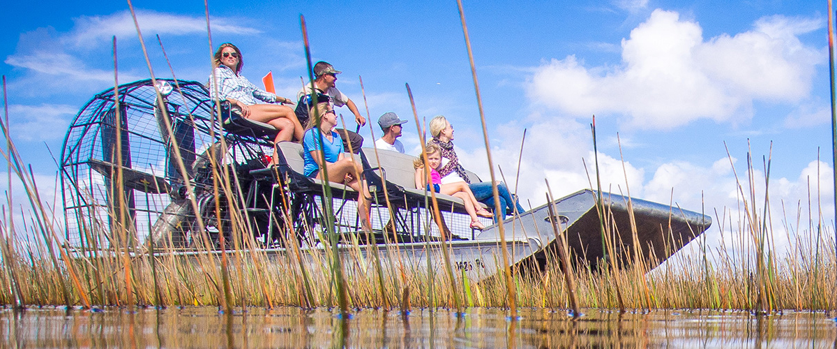 Why Taking an Everglades Tour is a Must for Tourists and Locals